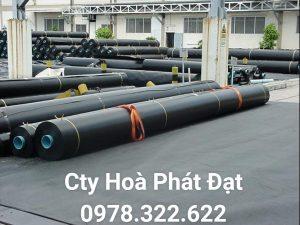 Báo giá cung cấp thi công vải bạt, màng chống thấm nước HDPE lót ao hồ tôm cá tại Huyện Bàu Bàng