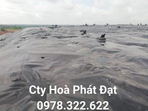 Báo giá cung cấp thi công vải bạt, màng chống thấm nước HDPE lót ao hồ tôm cá tại Huyện Phú Giáo