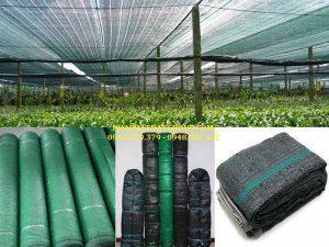 Báo giá cung cấp lắp đặt lưới che nắng, lưới chống nắng rẻ bền tại Tp Thủ Dầu Một